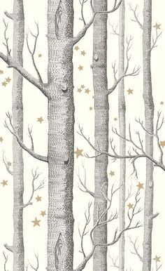 Cole and Son Woods & Pears wallpaper in Black, White & Gold from The Contemporary Restyled collection Star Wallpaper, Wood Wallpaper, Wallpaper Online, Pattern Wallpaper, Custom Wallpaper, Silver Birch Wallpaper, Hall Wallpaper, Feature Wallpaper, Wallpaper Direct