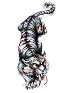 026f0ef95 Pin Tribal Siberian Tiger Tattoo Flash Style Ink By Morningstarhall on ...  Ankle Tattoo