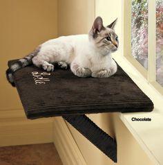 cat window seat - Google Search