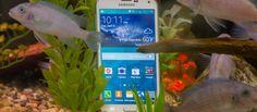 Galaxy S5 sobrevive a 7 meses sob sol chuva poeira e tudo o que há de ruim - EExpoNews
