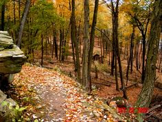 Gillette's Castle hiking trail, CT - Pixdaus
