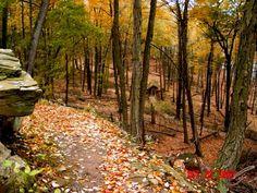 Gillette's Castle hiking trail, CT - Pixdaus