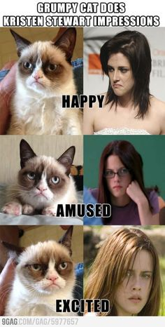 Grumpy Cat does Kristen Stewart impressions. hahaha