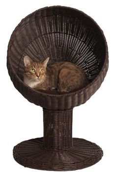 This is very awesome, I reckon. Kitty Ball Bed By Refined Feline - a large comfortable bed.  #catballbed #catbeds