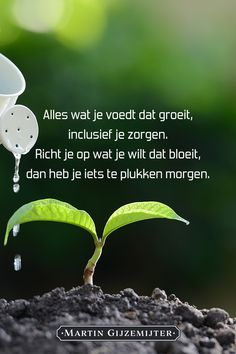 "Mooie tekst passend bij ""daden voeden gedachten"" Wish Quotes, Love Life Quotes, Great Quotes, Counseling Quotes, Career Counseling, Positive Life, Positive Quotes, Dutch Words, Dutch Quotes"