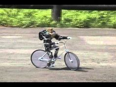 Amazing Bike Riding Robot! Can Cycle, Balance, Steer, and Correct Itself 二足歩行ロボットを自転車に乗せてみた(The biped robot whict rides on a bicycle.) - YouTube