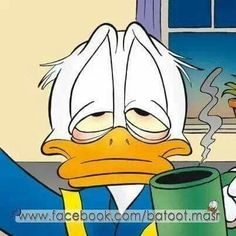 Walt Disney, Donald Disney, Disney Duck, Disney Pixar, Duck Pictures, Disney Pictures, Mickey Mouse Cartoon, Mickey Mouse And Friends, Pato Donald Y Daisy