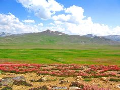 Deosai HD Wallpapers | WallpapersCharlie
