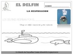 El delfín Place Cards, Place Card Holders, Animals, Dolphins, Projects, Hipster Stuff, Bass, Animales, Animaux