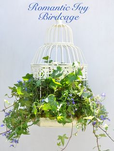 How to make a birdcage planter that is perfect for part-shade. I've always wanted to make a birdcage planter for my front…//REPURPOSE BIRD CAGE