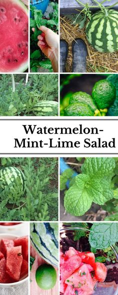 A refreshing, mouth-watering snack or side dish for your summer table. It's a fave at my house!