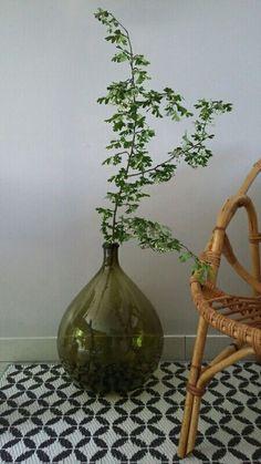 Home Decor Kitchen, Home Decor Bedroom, Diy Home Decor, Vase Vert, Rama Seca, Plants In Bottles, Flora Design, Vase Arrangements, Deco Floral