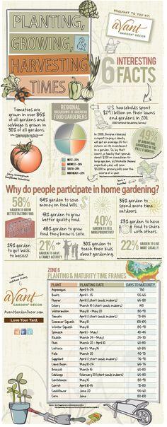 Harvest Garden - http://www.avantgardendecor.com/how-to/vegetable-gardening/planting-growing-harvesting