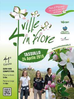 La manifestazione 41° QUATTRO VILLE IN FIORE si svolgerà il 24 Aprile 2016 Il percorso si snoda tra i frutteti nel pieno della fioritura, attraversa le diverse frazioni del Comune di Tassullo e cost