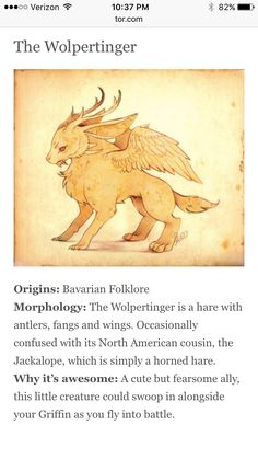 Draw Creatures The Wolpertinger Legends And Myths, Wow Art, Mythological Creatures, Magical Creatures, Strange Creatures, Creature Design, Fantastic Beasts, Writing Inspiration, Dungeons And Dragons