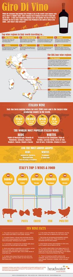 Italy and its wines. #travel #vacation #avacationrental4me
