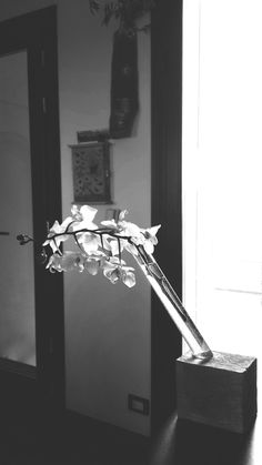 Sono felice di condividere l'ultimo arrivato nel mio negozio #etsy: IN..contro portafiori in cemento e vetro realizzato a mano da Salvatore Eko Design https://etsy.me/2J6RHAU #articoliperlacasa #vasi #cameradaletto #cemento #portafiori #vetro #artigianale #italia #fatt