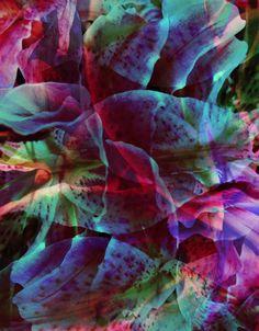 #pattern #textile #print Romantic and floral bed. More on my blog: http://kokopelia.pl/romantyczna-sypialnia-posciele/
