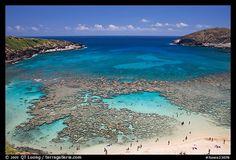 #pinhawaii  OMG ! snorklers dream... got to go here.  Hanauma Bay Oahu