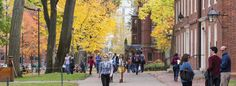 Como aplicar para cursos de Bacharelado em uma universidade no Reino Unido?