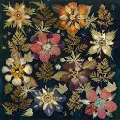Herbarium Print, By Gunilla Lagerhem Ullberg. Graphic Patterns, Color Patterns, Ikat Print, Creative Skills, Botanical Drawings, Contemporary Art, Floral, Prints, Painting