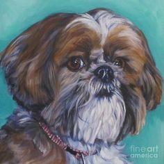 Shih Tzu Dog portrait art print of LA Shepard painting Chien Shih Tzu, Shih Tzu Puppy, Shih Tzus, Dog Portraits, Portrait Art, Painting Portraits, Painting Art, Paint Your Pet, Dog Art