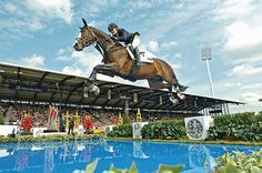 Kentucky Equestrian Games 2010 | World Equestrian Games 2010: most prestigious competition brought 900 horses, 800 athletes to Lexington...