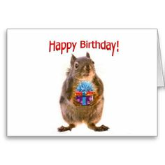 SOLD! Happy Birthday Squirrel with Present Greeting Card by FunNaturePhotography on Zazzle. #squirrels #birthdaycards #birthday