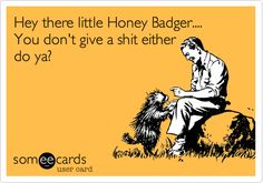 Honey badger don't care. I don't know why these honey badger things are so popular but they make me giggle.