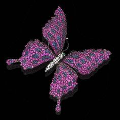ruby, sapphire and diamond butterfly brooch