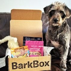 Barkbox: Toys and Treats for Pups | 13 Awesome Subscription Boxes For Everyone You Know