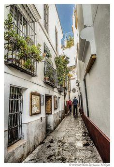 Streets of Quarter Santa Cruz in Seville, Spain