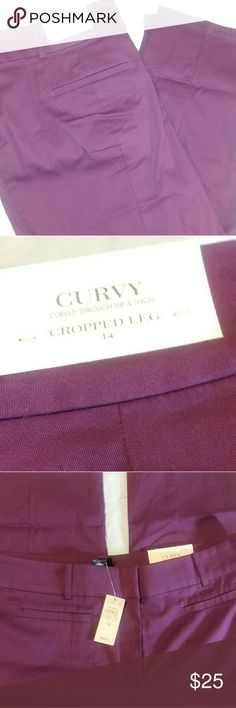 🆕NWT Eggplant Curvy Cropped Pants New with tags.  Beautiful eggplant stretch cropped pants. Perfect for fall! Ann Taylor Factory Pants Ankle & Cropped