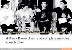 One sentence summary of Block B.