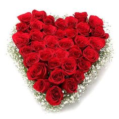#Rose #Bouquet for your special one on this #Valentine's day. http://bit.ly/1wL1wmy