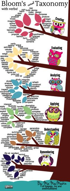 Bloom's revised Taxonomy with verbs! | An Ethical Island