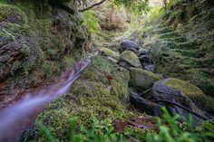 https://flic.kr/p/NB5EdU | Ribeiro Frio | Madeira Island