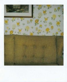 couch | wallpaper | floral polaroid