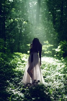 Love the silhouette photo, the Spotlight shining down from above, and all of The Greenery in the background!