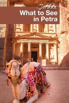 Petra, Jordan is on many travel bucket lists. Follow our guide on what to see in this new wonder of the world.