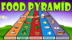 Learn about the foods you need to eat every day to be healthy and strong. Food Pyramid: grain group, vegetable group, fruit group, milk group, protein group....