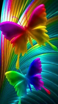 Rainbow art butterflies