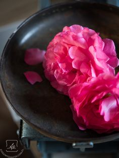 Konfitury z płatków róży po indyjsku. - Klaudyna Hebda