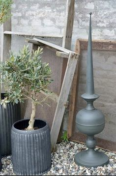 JDL Olives, Galvanized Metal, Olive Tree, Wire Baskets, Garden Planters, Topiary, Plants, Terrariums, Clothing