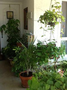 Shade porch