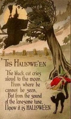 Halloween card with witch and black cat