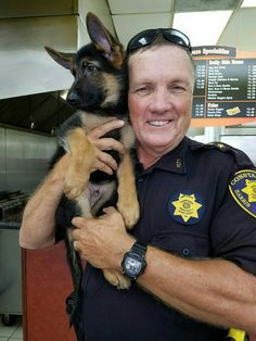 Texas Select German Shepherds puppy with new owner.