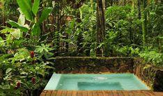 Jardin moderno y tropical 6