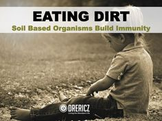 Soil based organisms are probiotics that live in dirt. They provide our GI tracts much needed support for digestion, and are important for our health.