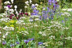 Et super elegant bålsted White Flowers, Gardening Tips, Planters, Elegant, World, Simple, Inspiration, Guide, Chelsea